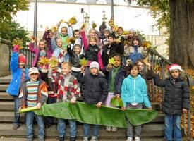 2011-Okt Herbstblätter 1a Hei 3